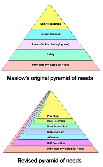 maslow_pyramid_needs-revised