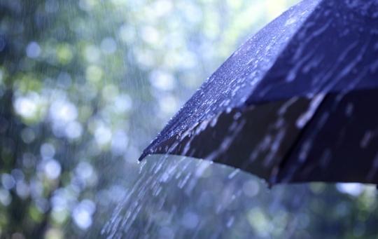 umbrela uda
